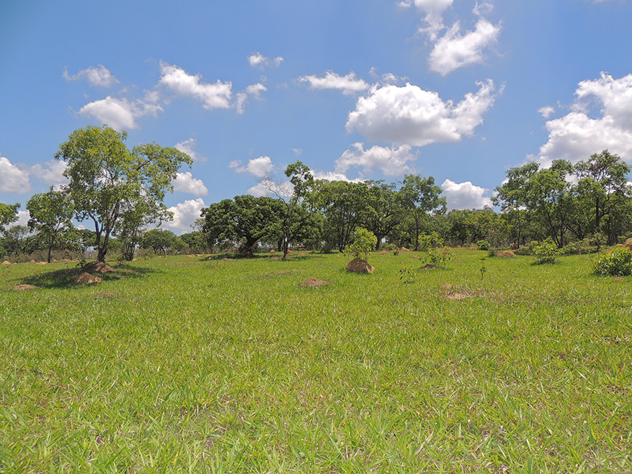 Fotos-Fazendas-do-Barreiro-18