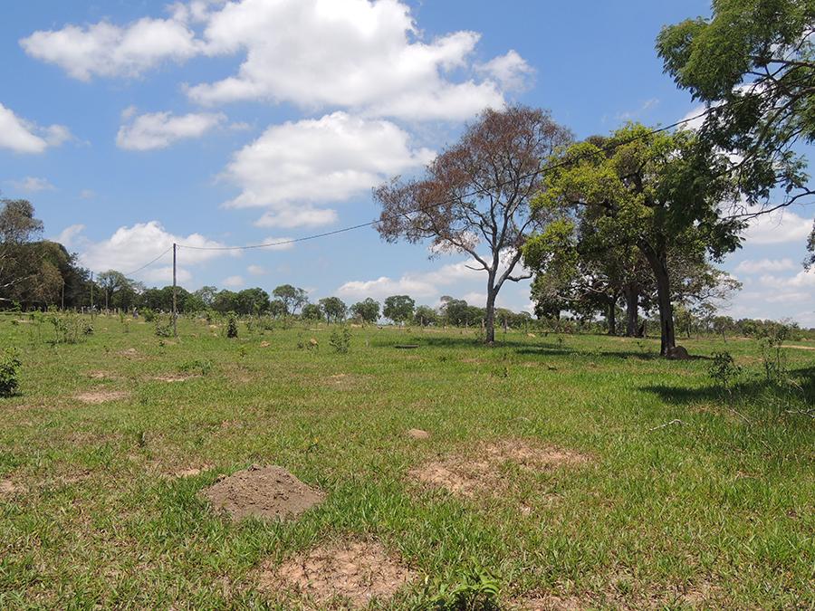 Fotos-Fazendas-do-Barreiro-6